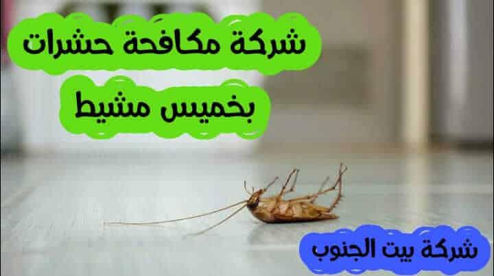 Photo of شركة مكافحة حشرات بخميس مشيط 0538857370 مع الضمان والخصم